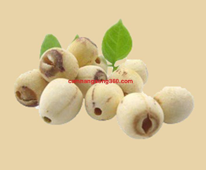 Mua hạt sen khô tại Hà Nội