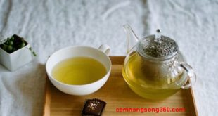 Công dụng của trà hoa cúc đối với sức khỏe