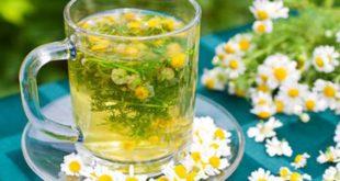 Uống trà hoa cúc giảm cân