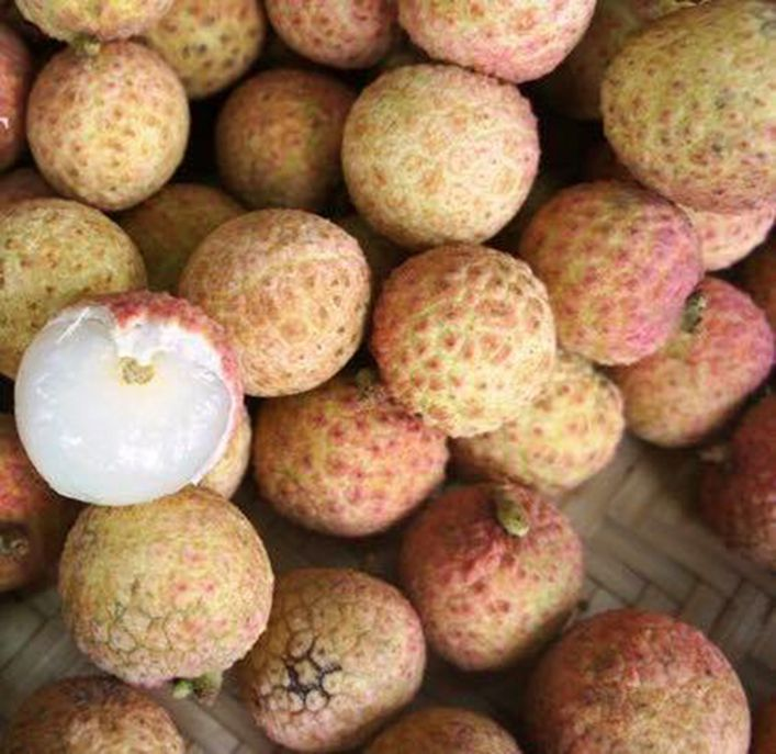 Trái vải sấy khô Bắc Giang