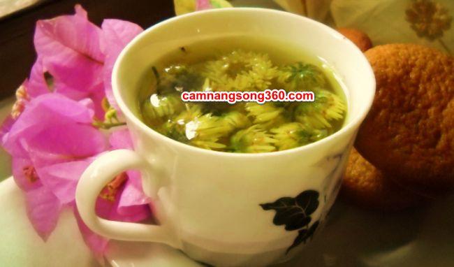 Giống hoa cúc làm trà
